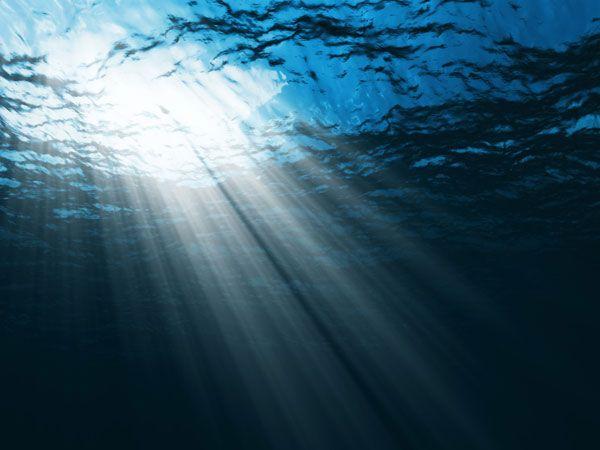 NG Ocean